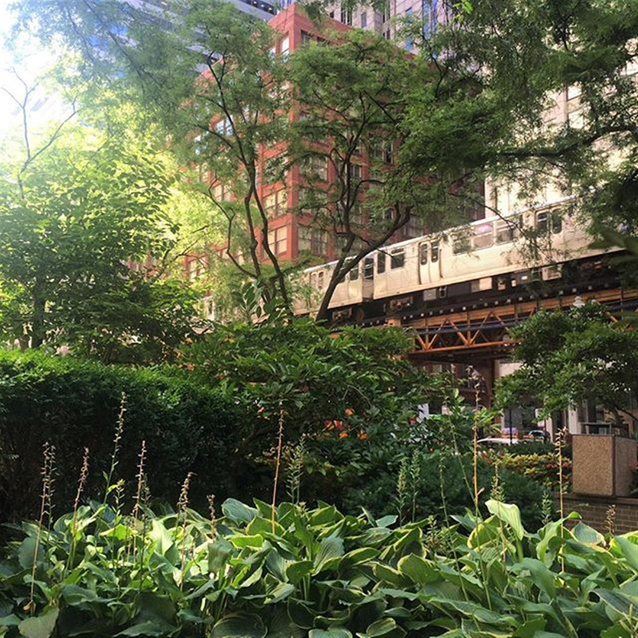 Lunch in the Chicago Loop.  Hidden garden with an EL track cut through!