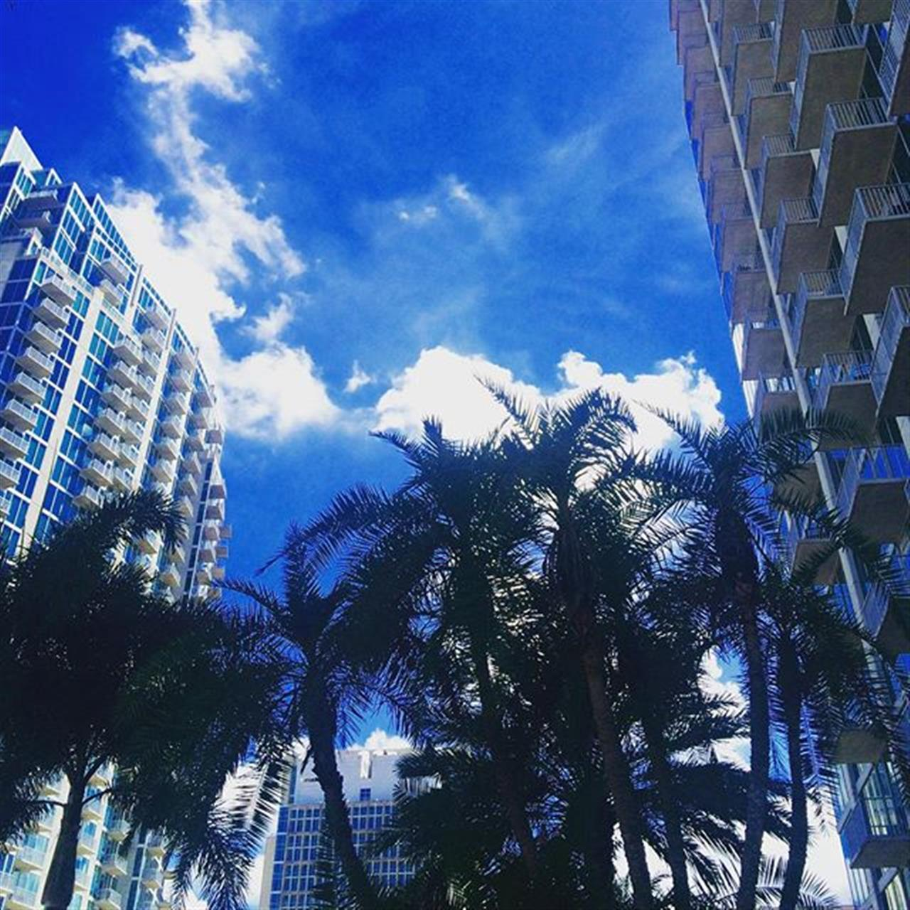 Another beautiful day in Downtown Tampa #skypoint #element #leadingrelocal #smithandassociates #downtowntampa