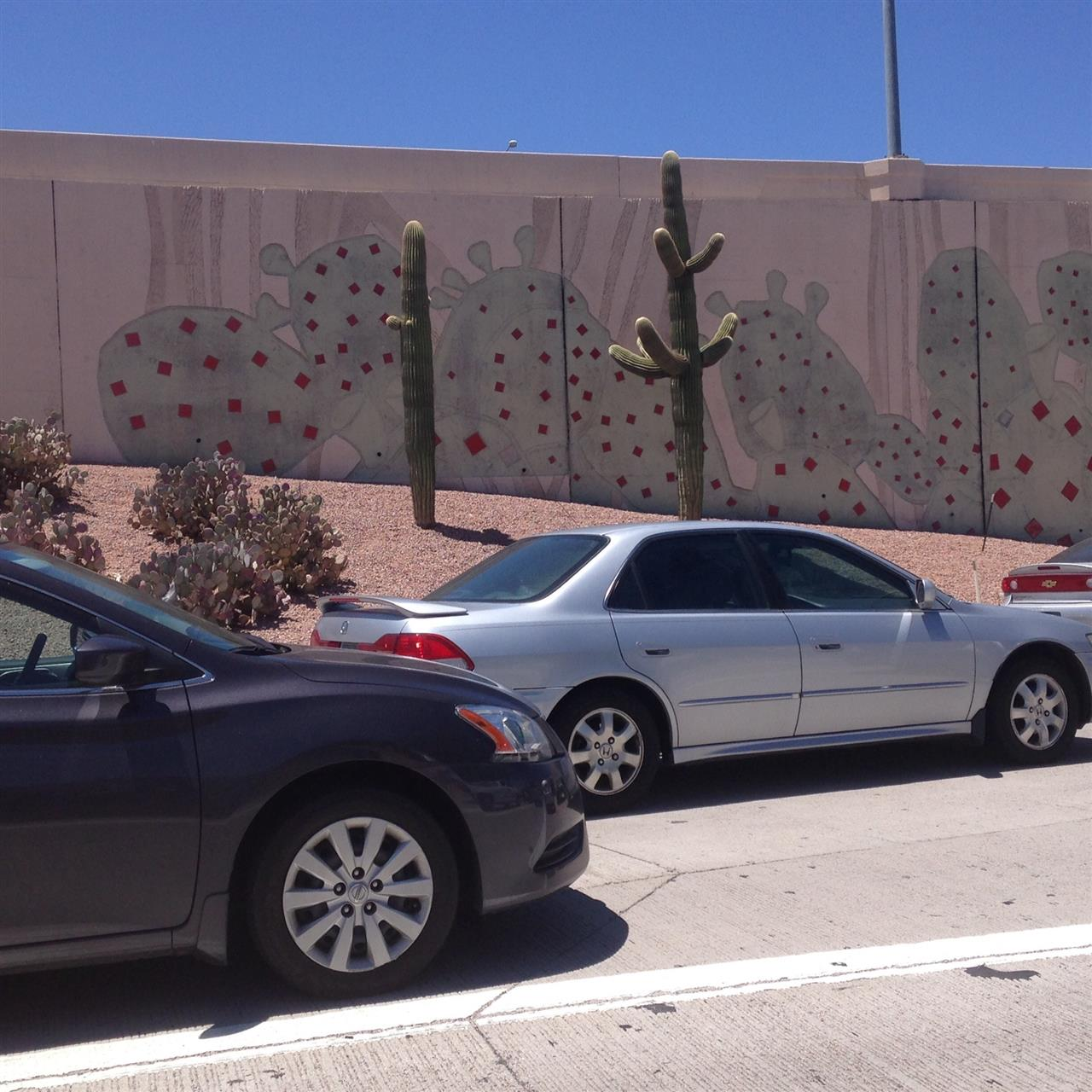 Even the freeway walls fit in with the desert!  #Scottsdale#Arizona