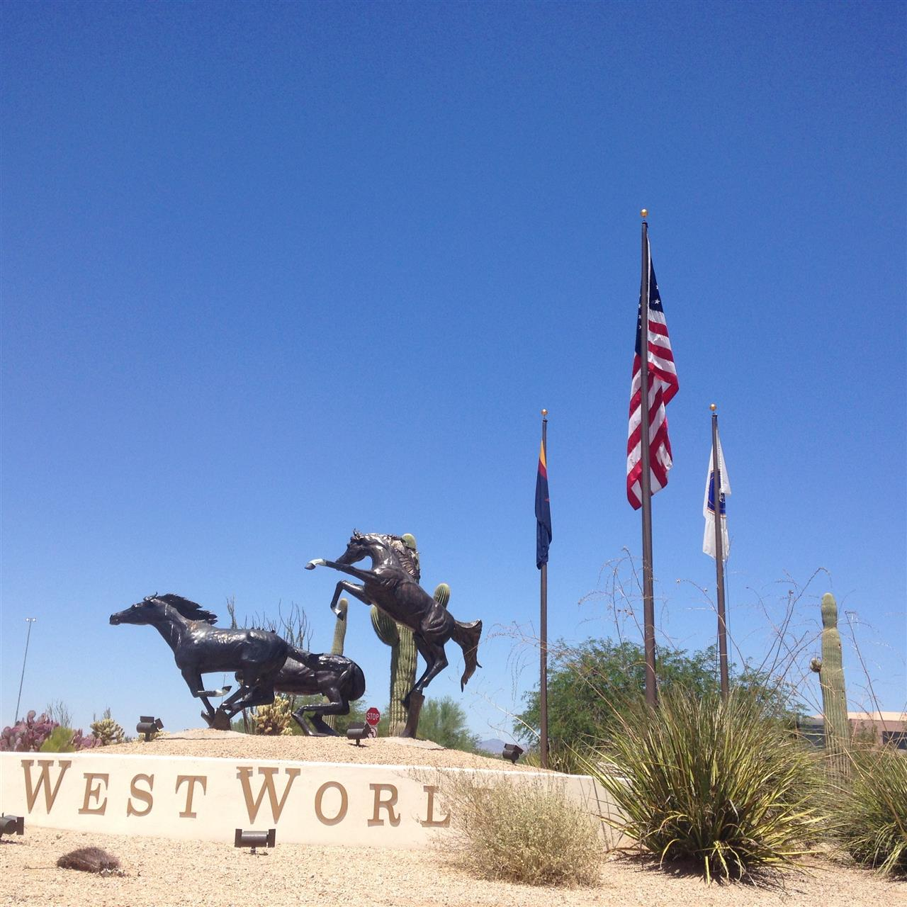 Westworld where three and a half horse shows can be going on at the same time!  #Scottsdale#Arizona