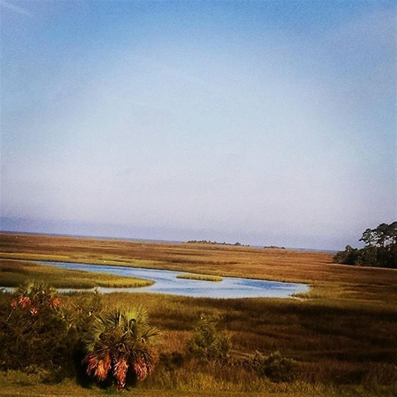 My beautiful view this morning!!! The Gulf is on the other side of the Marsh!!