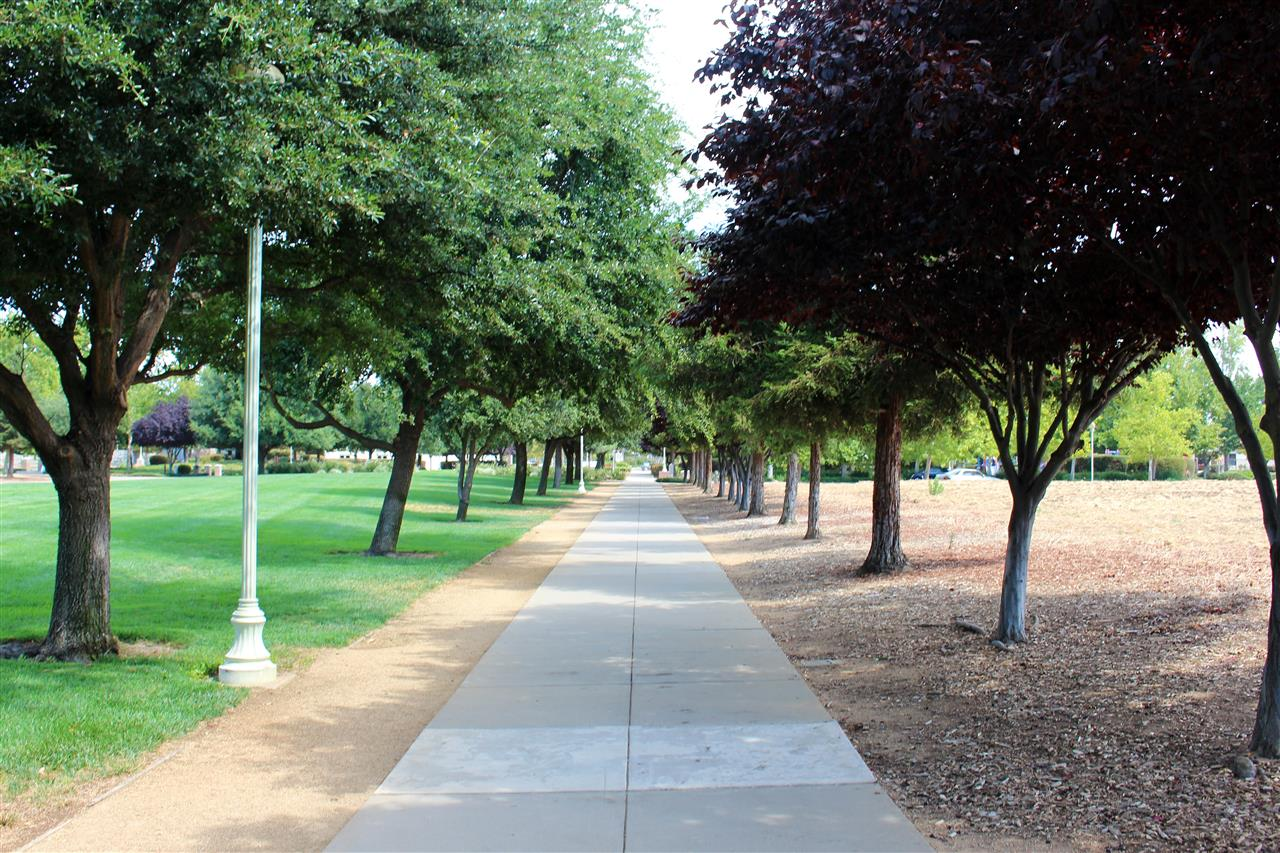 Town Hall Park Elk Grove, CA #LeadingRELocal  #LyonRealEstate