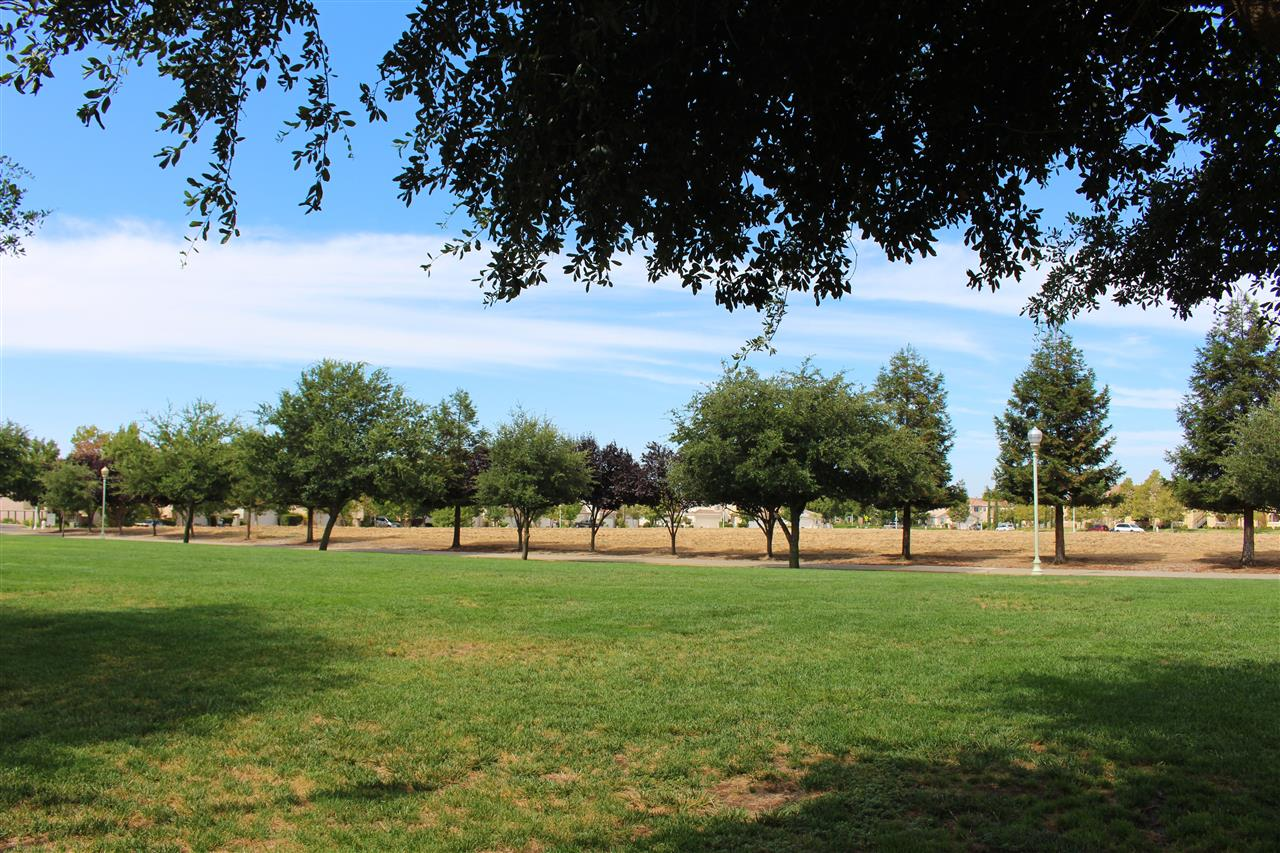 Town Hall Park Elk Grove, CA #LeadingRELocal  #LyonRealEstate