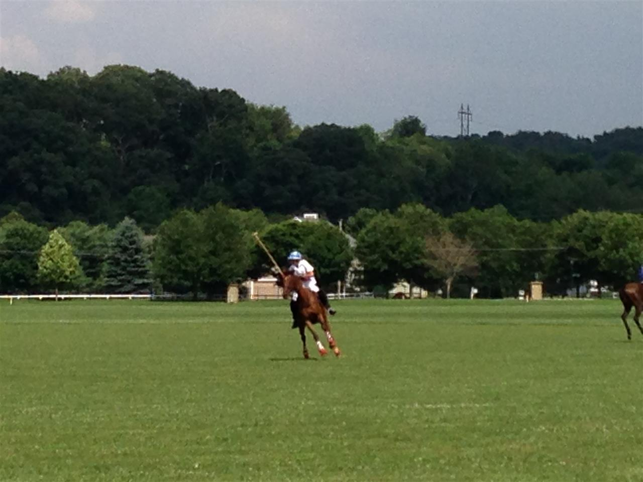 Polo Match, Granville, Ohio