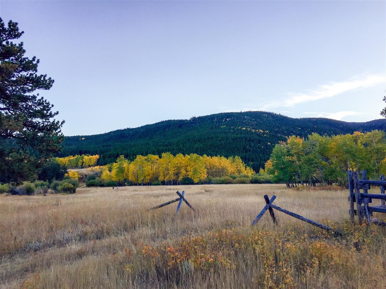 Caribou Ranch Open Space, Nederland, CO