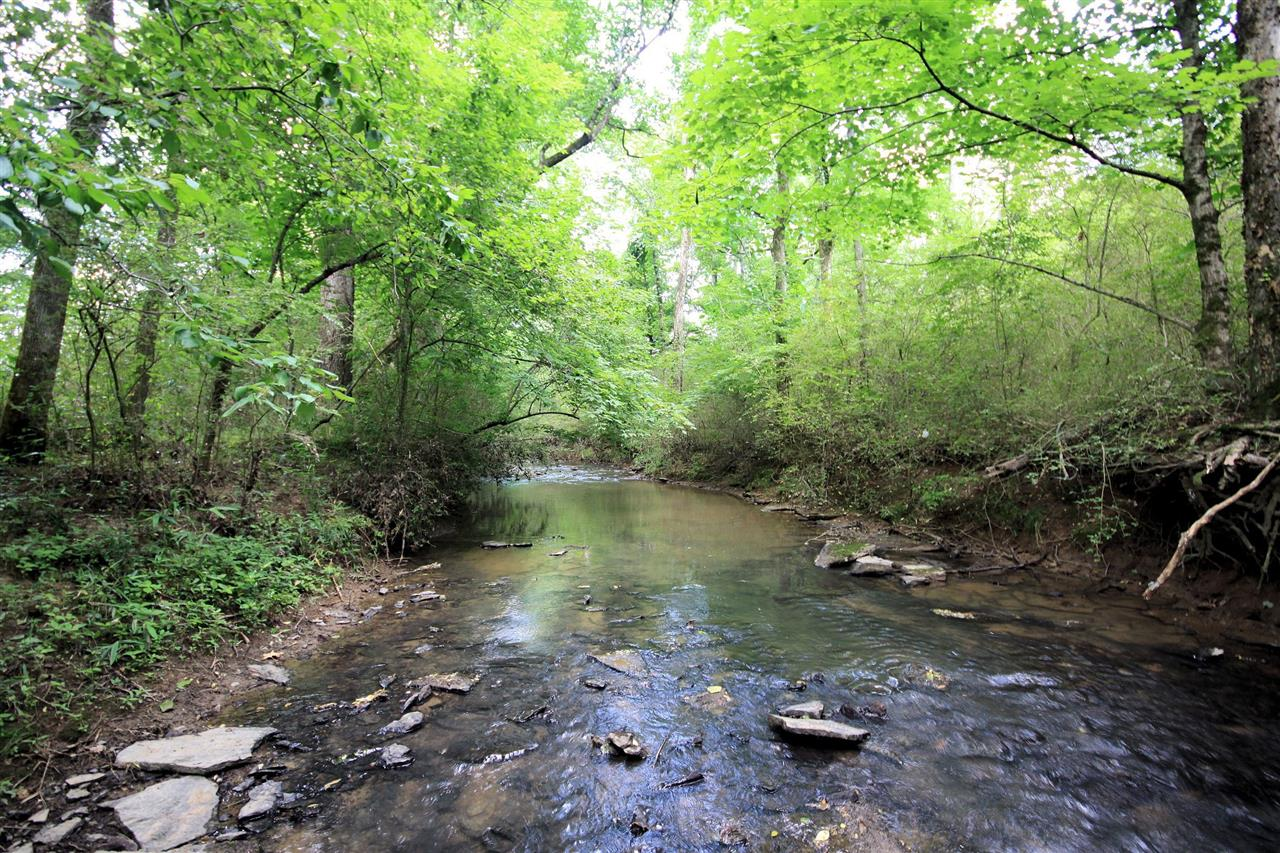 "Wades Grove Subdivision's hidden Treasure ""Aenon Creek"""