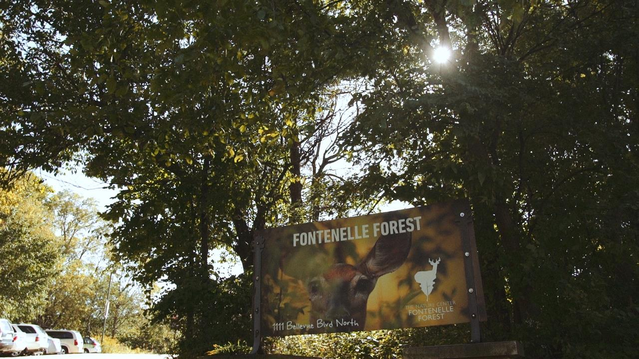 Fontonelle Forest