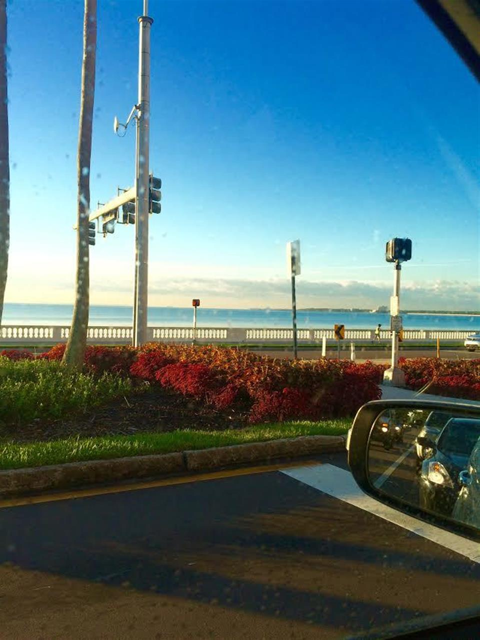 Fall commute views #bayshoreboulevard #southtampa #tampabay