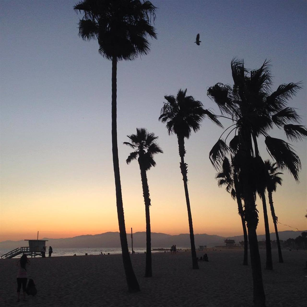 Venice Beach sunset, Los Angeles, CA