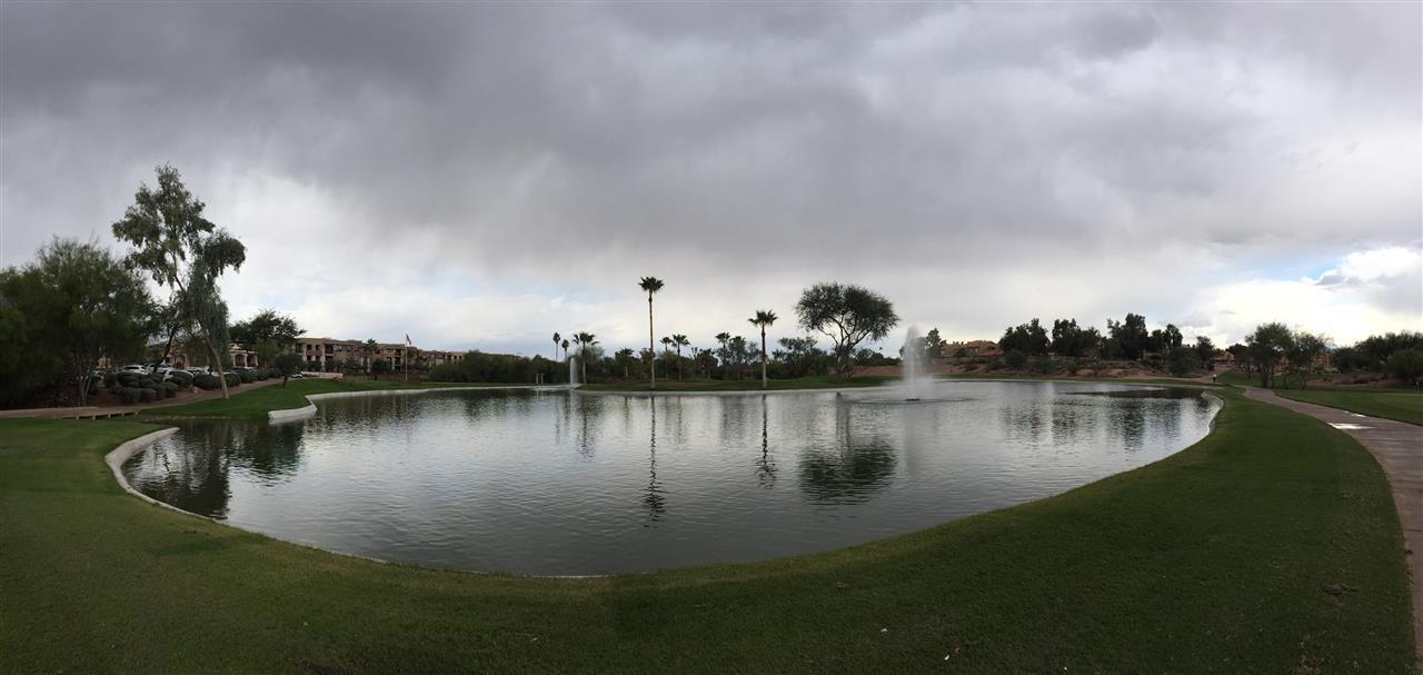 Scottsdale Pond/Golf