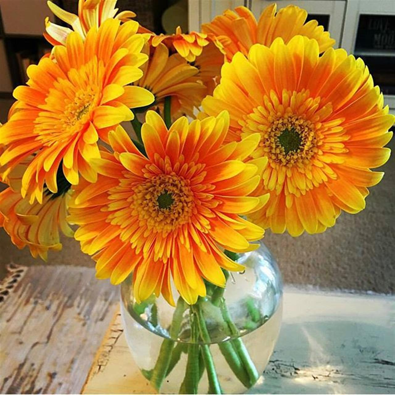 Happy Friday flowers from the Mar Vista Farmers market! Wishing you a wonderful weekend :) Regram from @lalocalrealestate