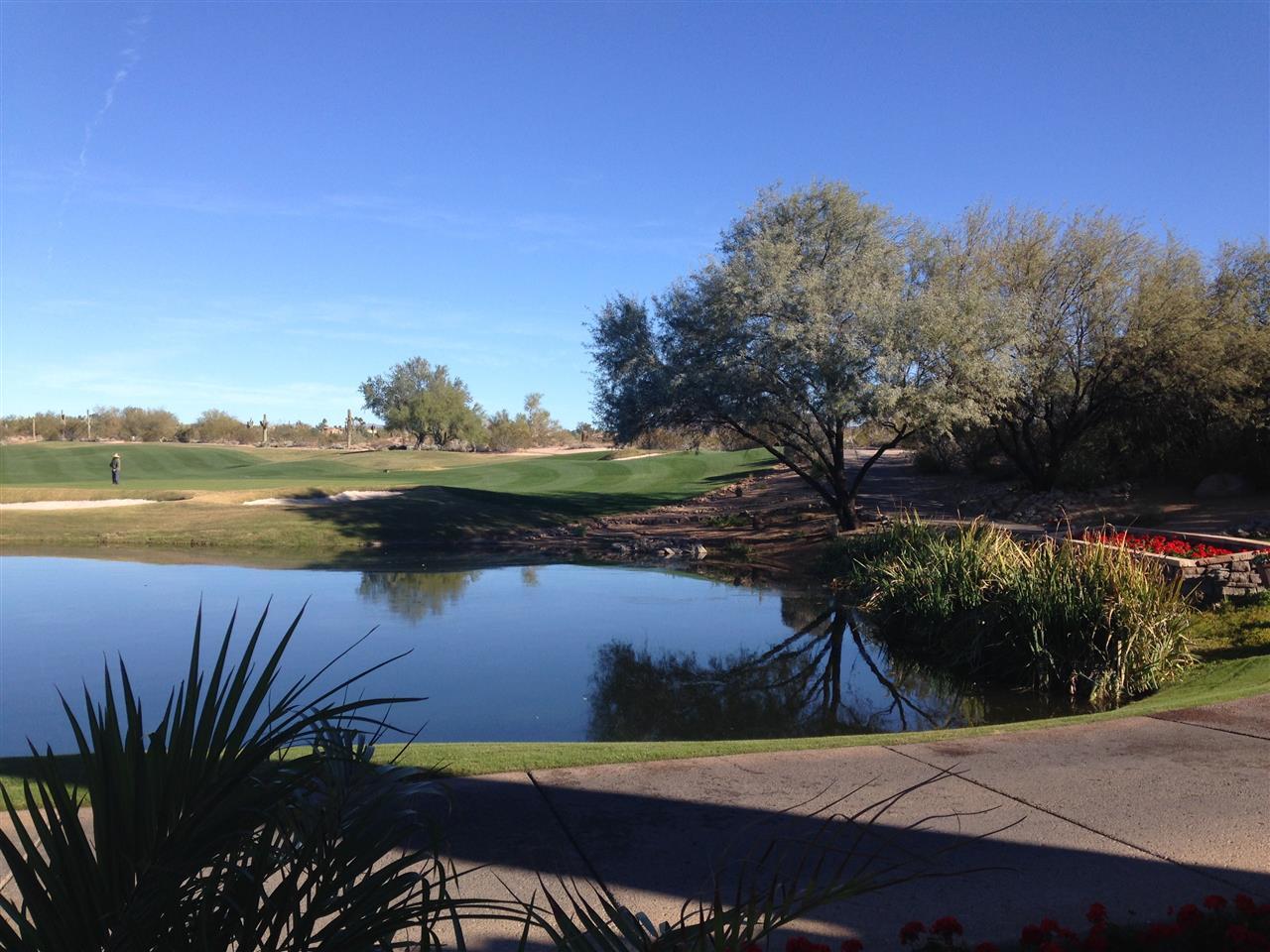 An incredibly beautiful public golf course #Grayhawk#Scottsdale#Arizona