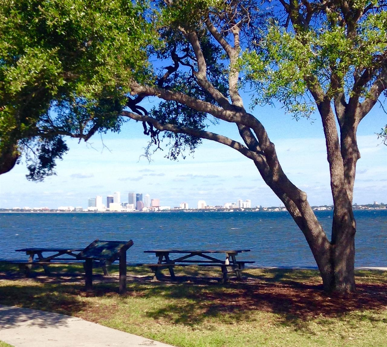 Great view of downtown Tampa