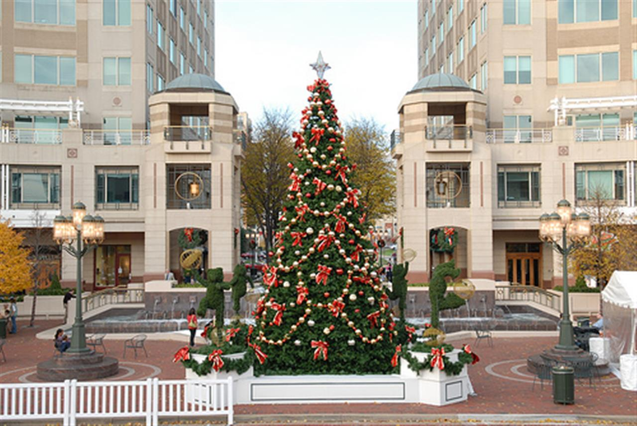 Christmas Tree in Peoria, Illinois