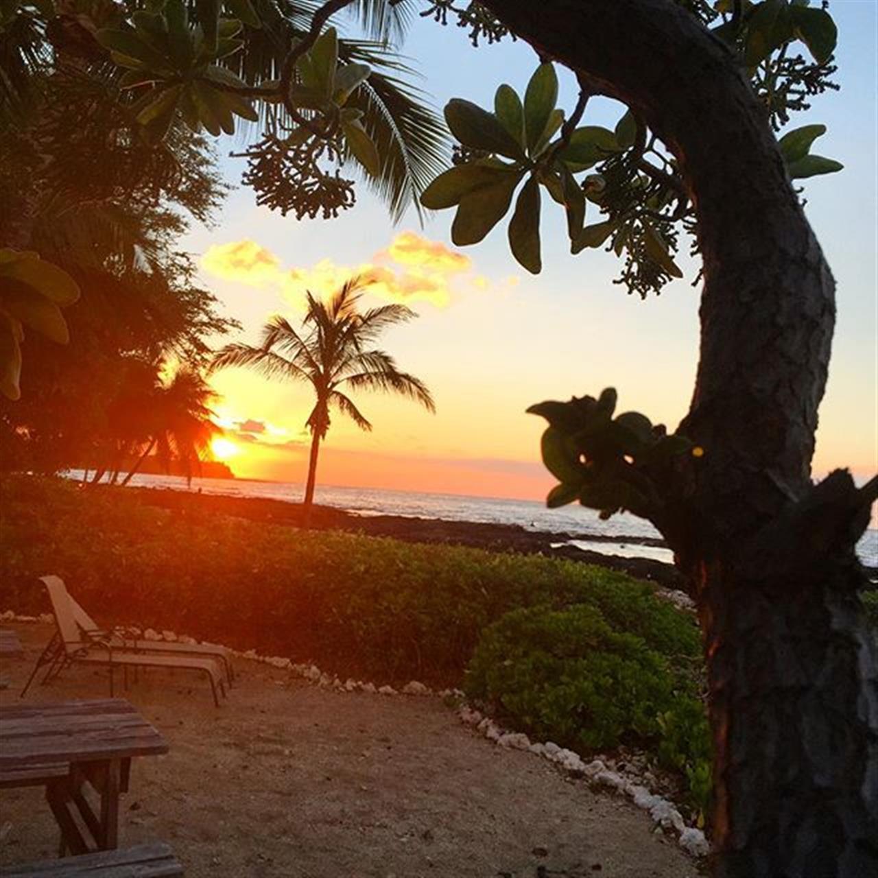 #sunbeam sunset in #Puako tonight! ?? Always amazing! #hnnsunrise #leadingrelocal #hawaiilife #beemary @puakopattie @derbyfarms