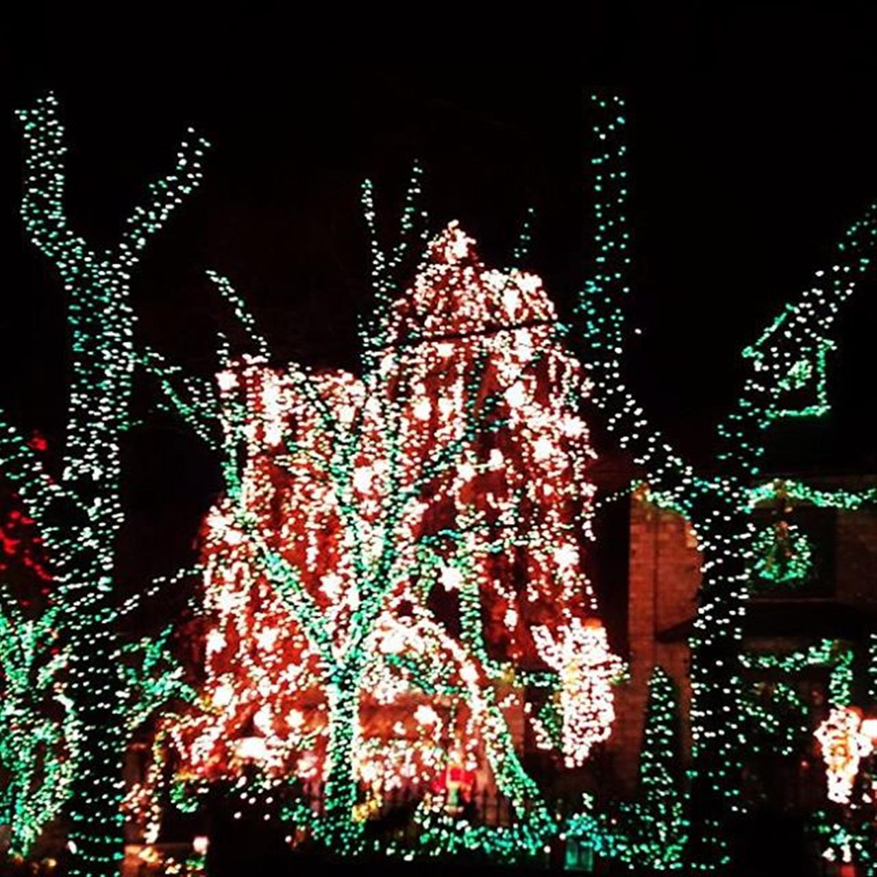 Showing  #christmaslights in #dykerheights . #dykerheightslights2015 #leadingrelocal #happyholidays