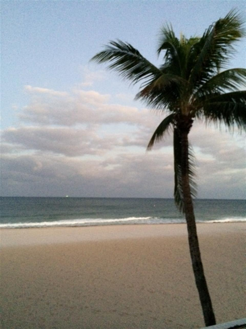 Fort Lauderdale Beach from the Pelican Grand Hotel