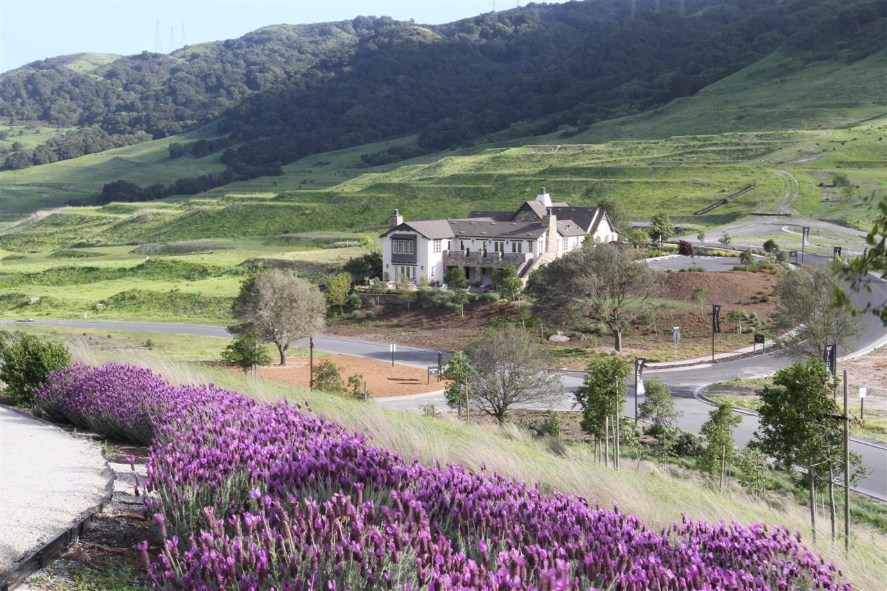 Wilder Model Home in lavender