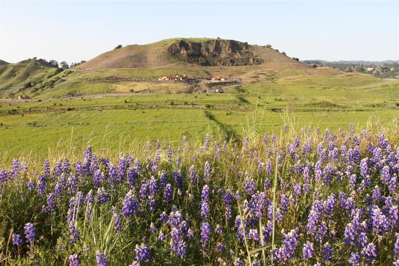 View to Wilder quarry