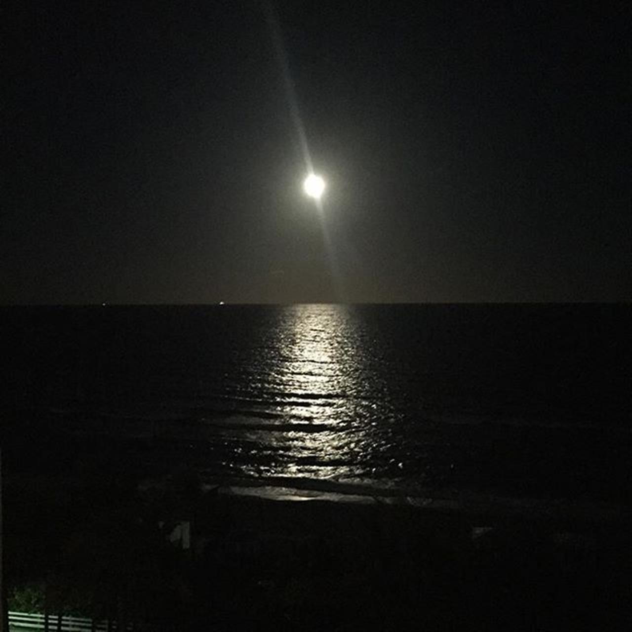 Moonlight in #Miami! Gorgeous night!