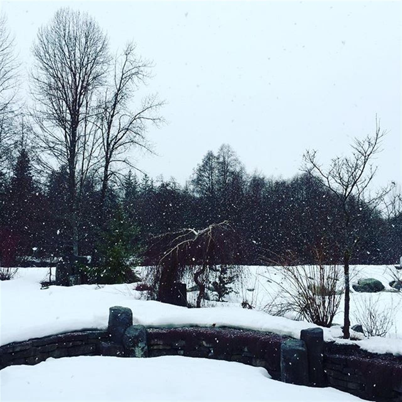#snowday #whistler #leadingrelocal #realestateagent