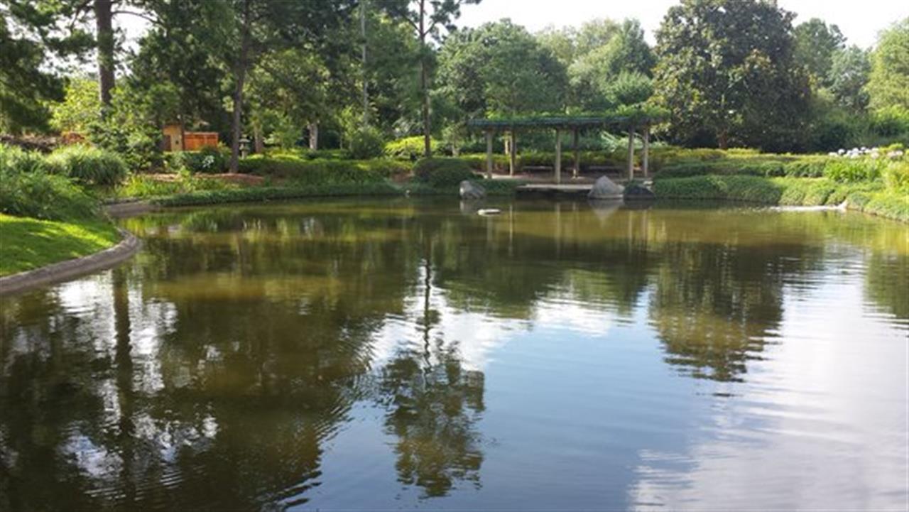 Japanese Garden in Hermann Park, Houston #LeadingRELocal