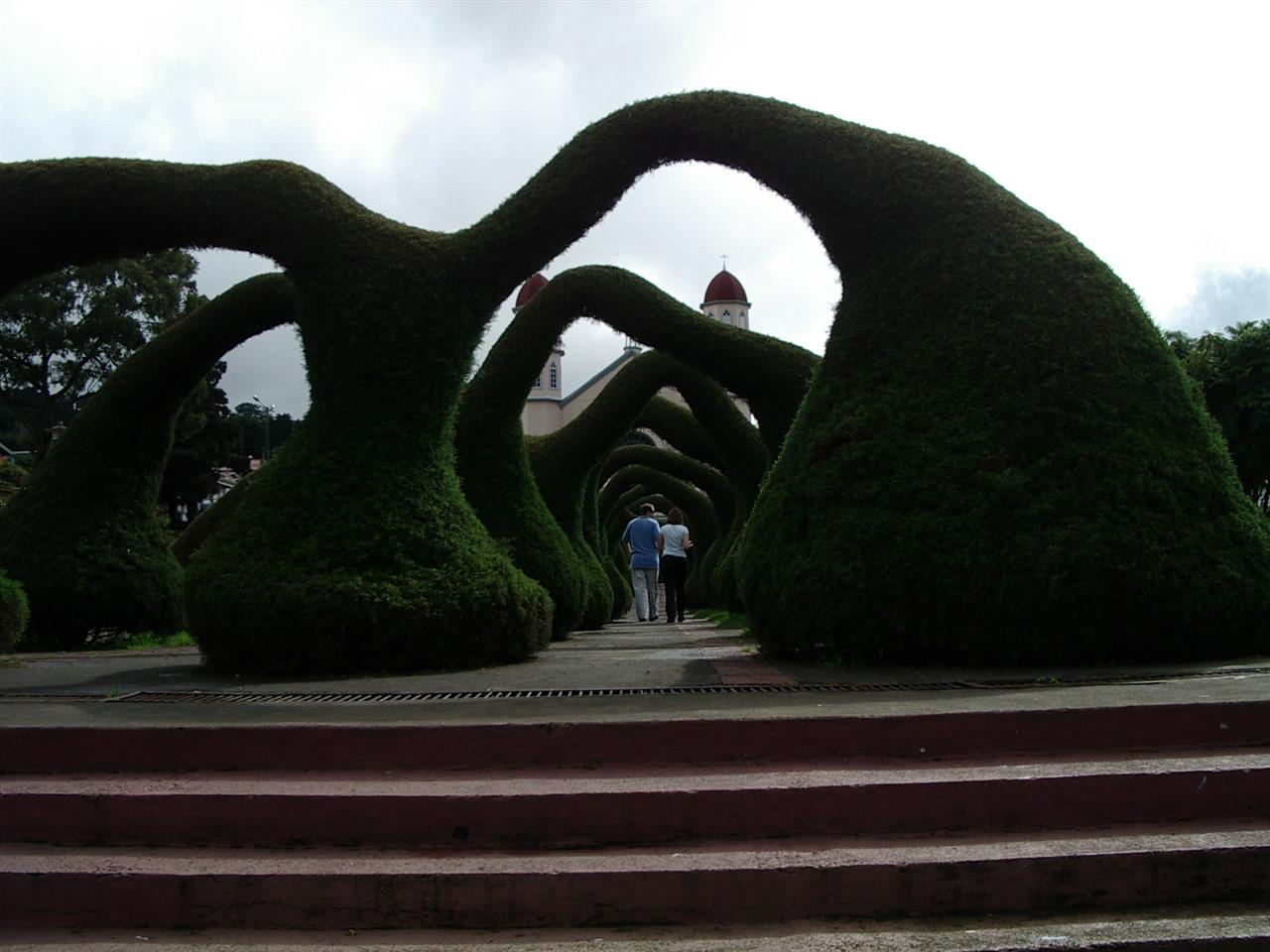 the famous Zarcero park in Alajuela, Costa Rica