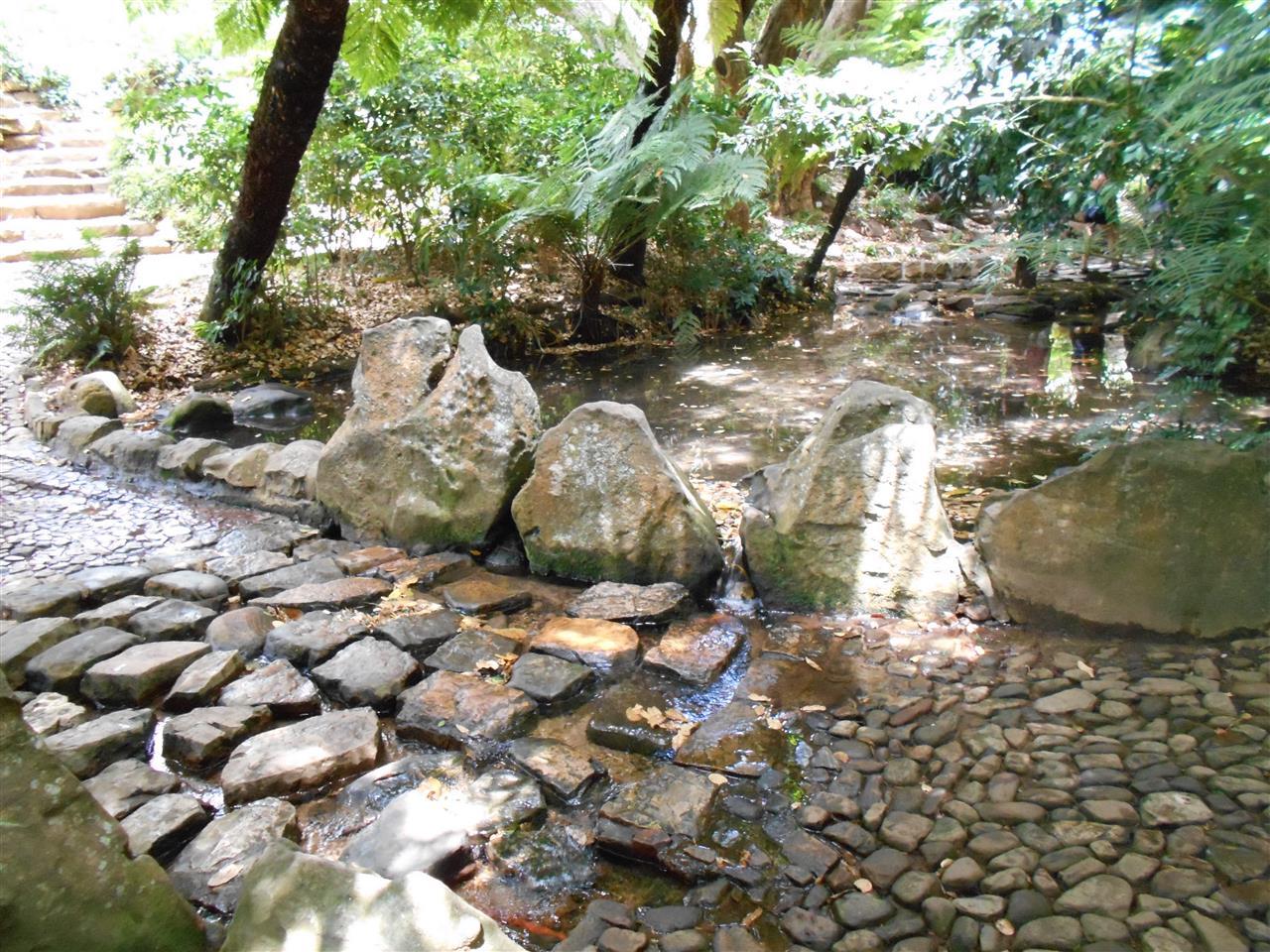 Cape Town, South Africa - stepping stone stream in Kirstenbosch Botanical Gardens