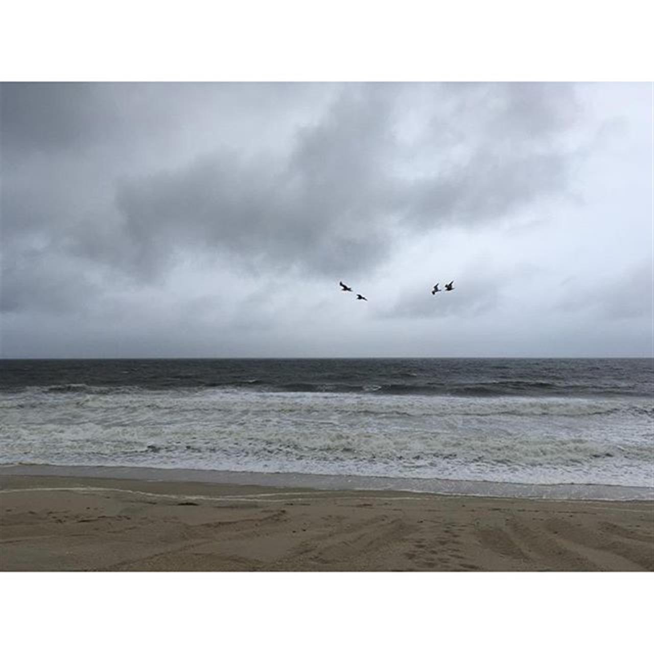 4 A stormy day in Mantoloking... #nj #goodmorning #tgif #bayhead