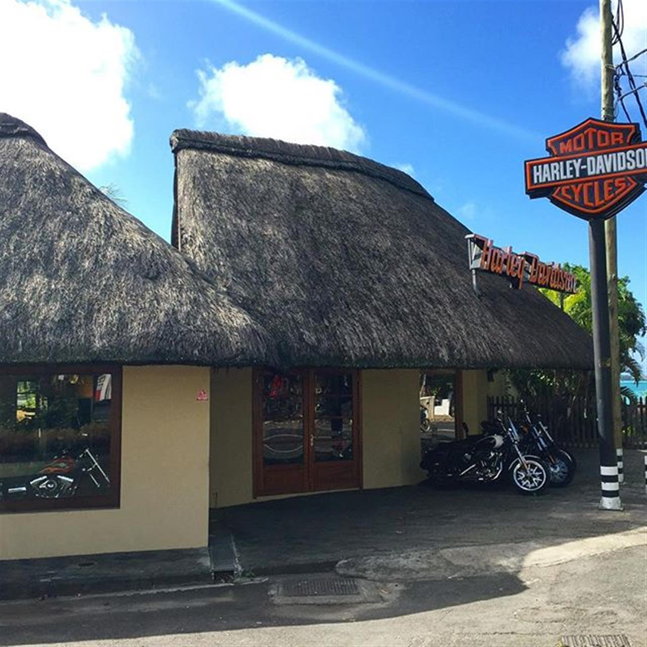#harleydavidson in #mauritius for the bike lovers #leadingrelocal