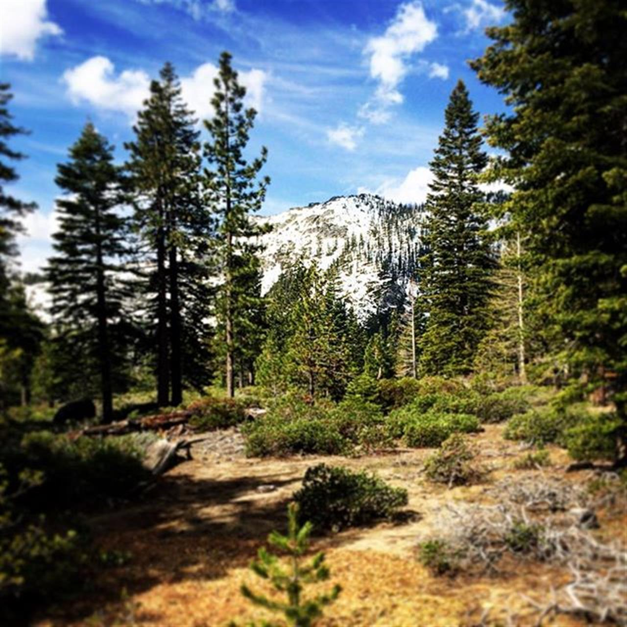 Love living in Lake Tahoe! Incredible views! #liveintahoe #southlaketahoe