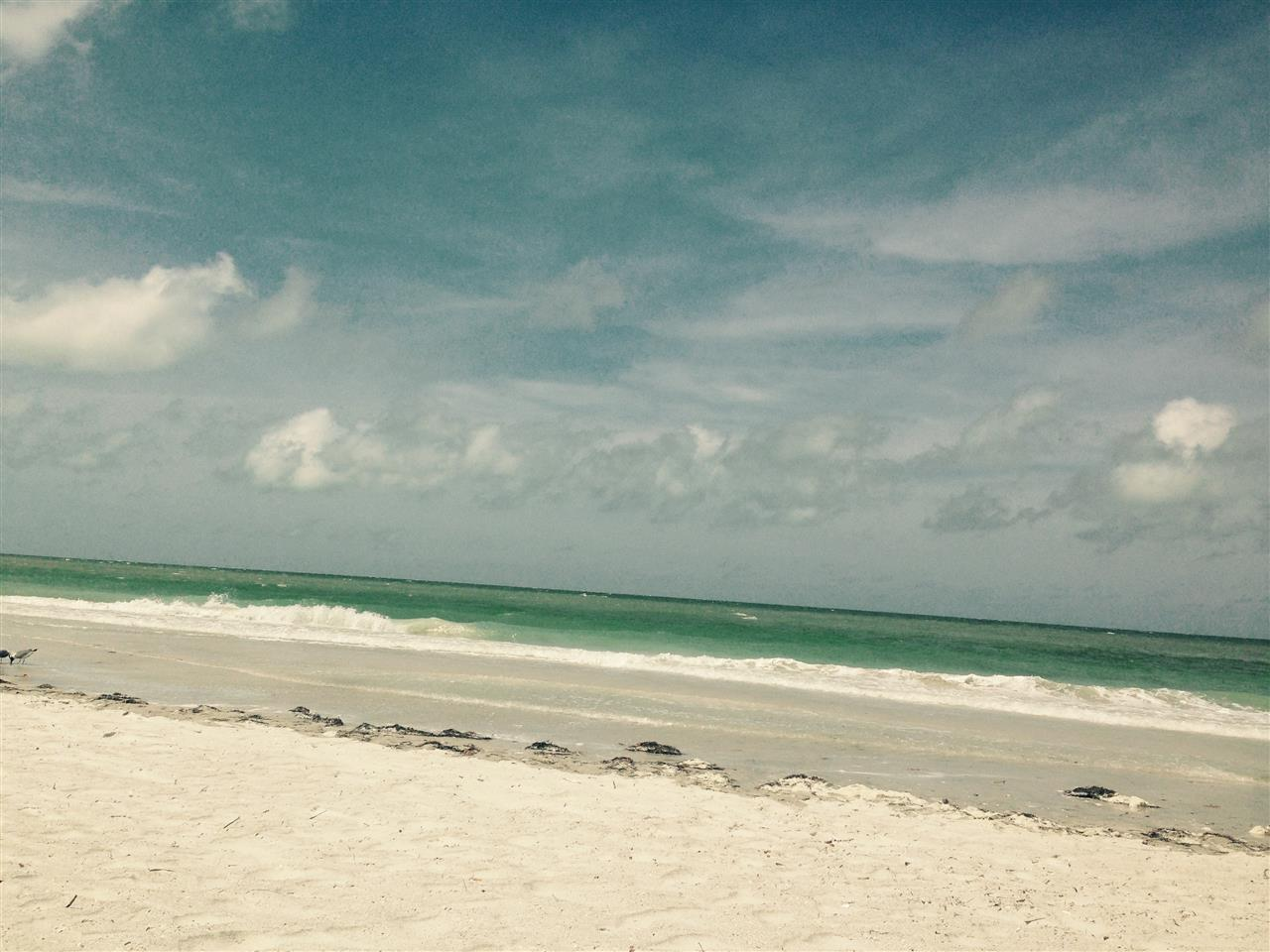 Beachin it in #IndianRocksBeach