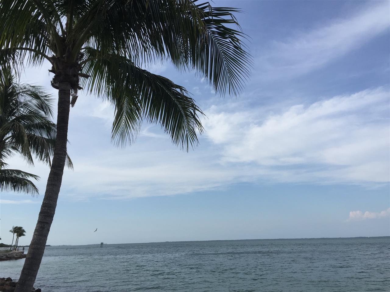 #Sanibel/Captiva  the drive to the Southseas Resort