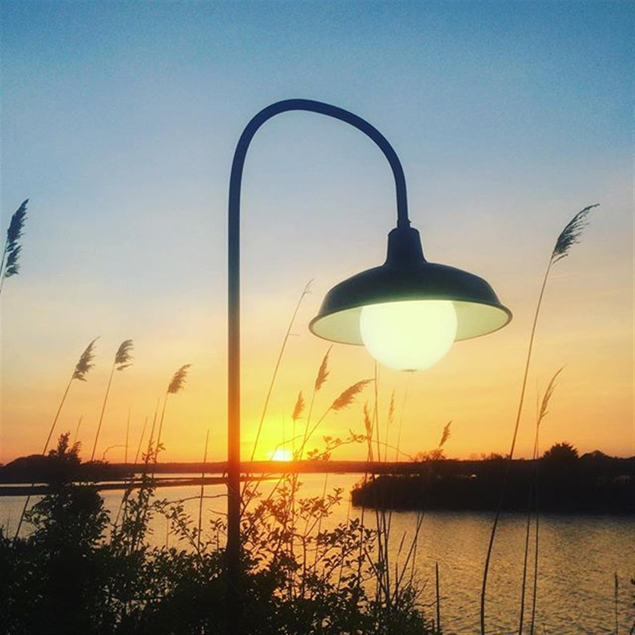 Have a de light filled night #peace #inspiration #possibilities #hope #magic #outdoors #nature #sunset