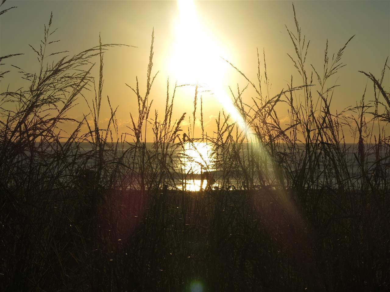 Rehoboth Beach Delaware - sun through the dunes