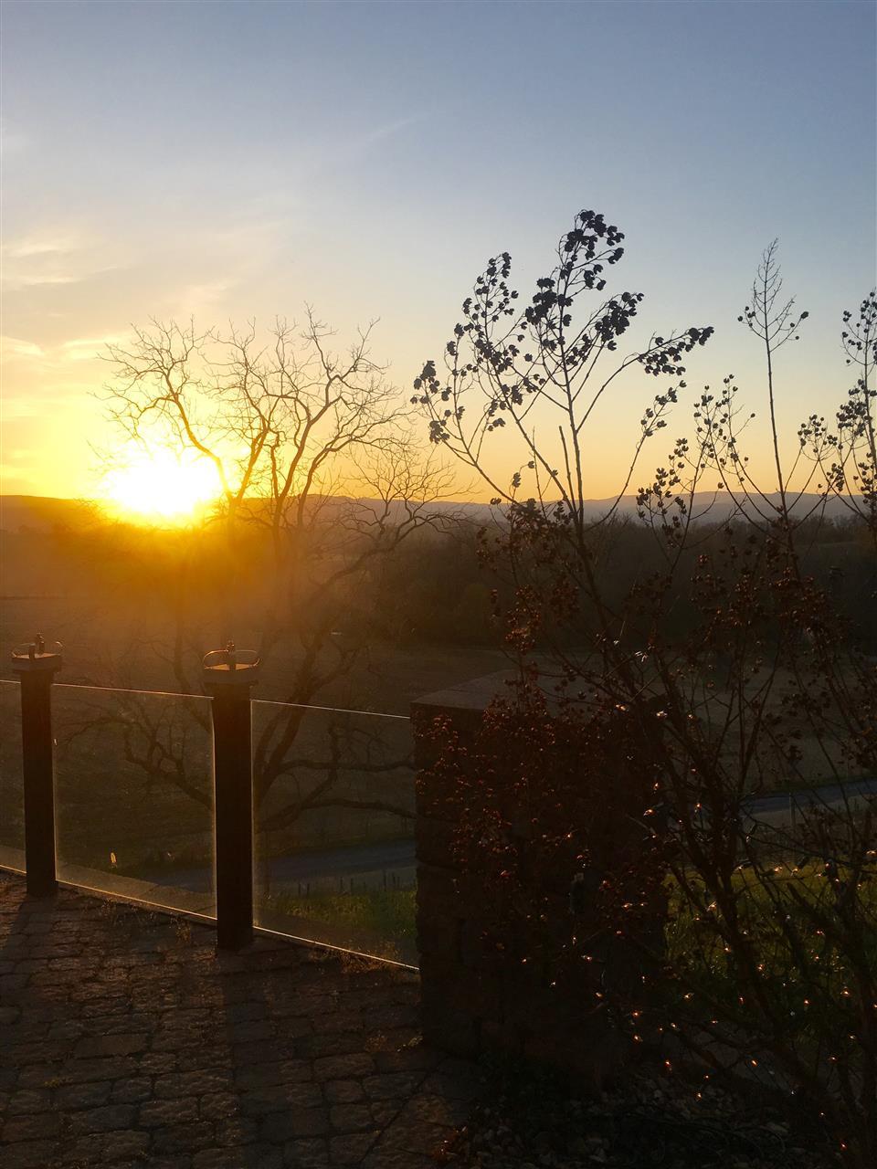 View from Bluestone Vineyard, Bridgewater, Virginia