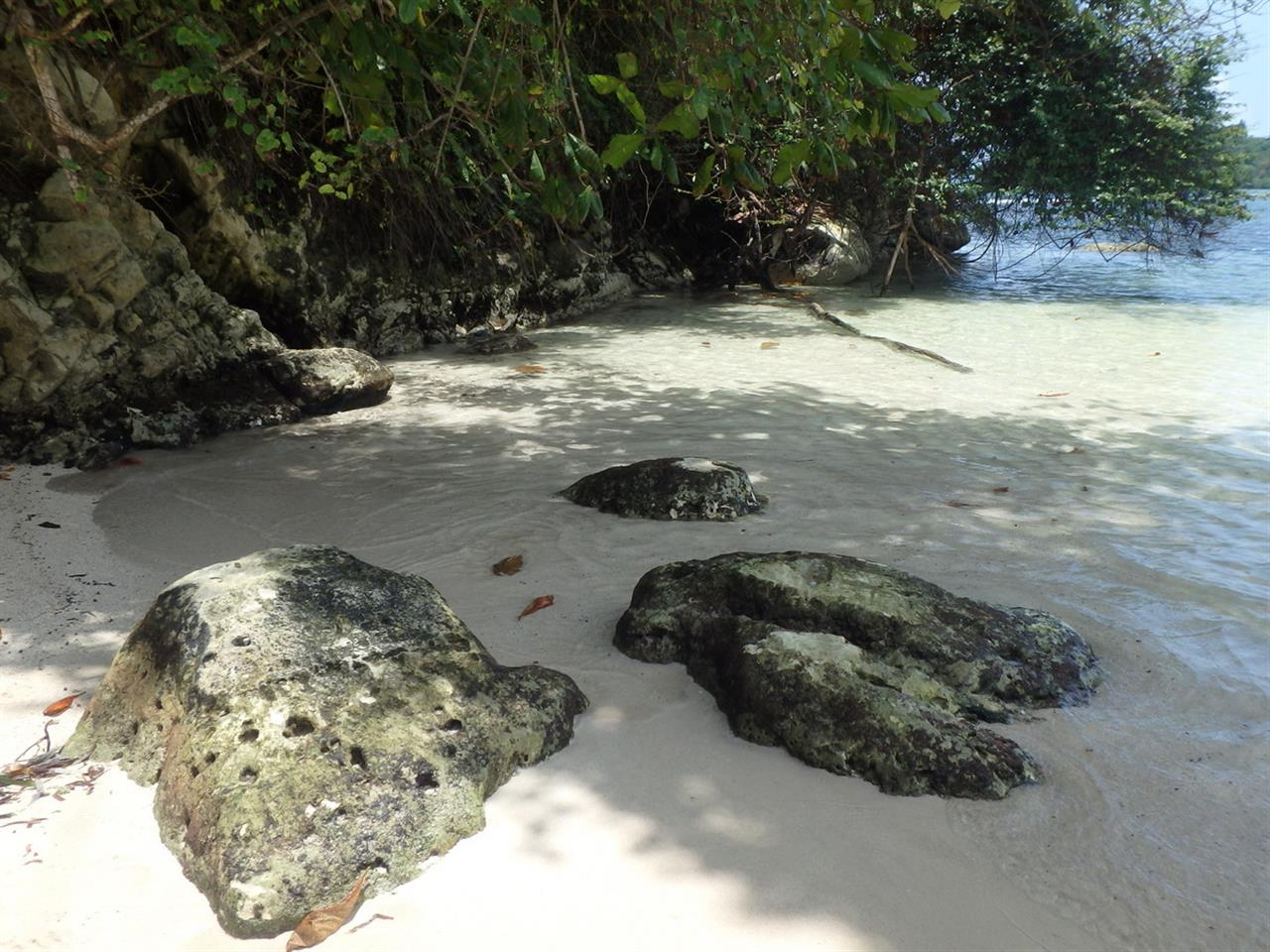 Monkey Island , Jamaica
