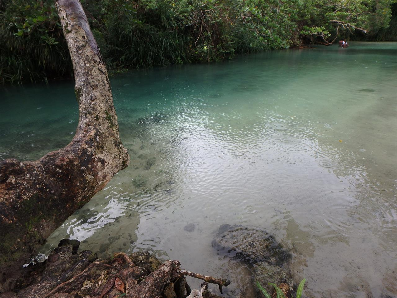 River in Portland, Jamaica