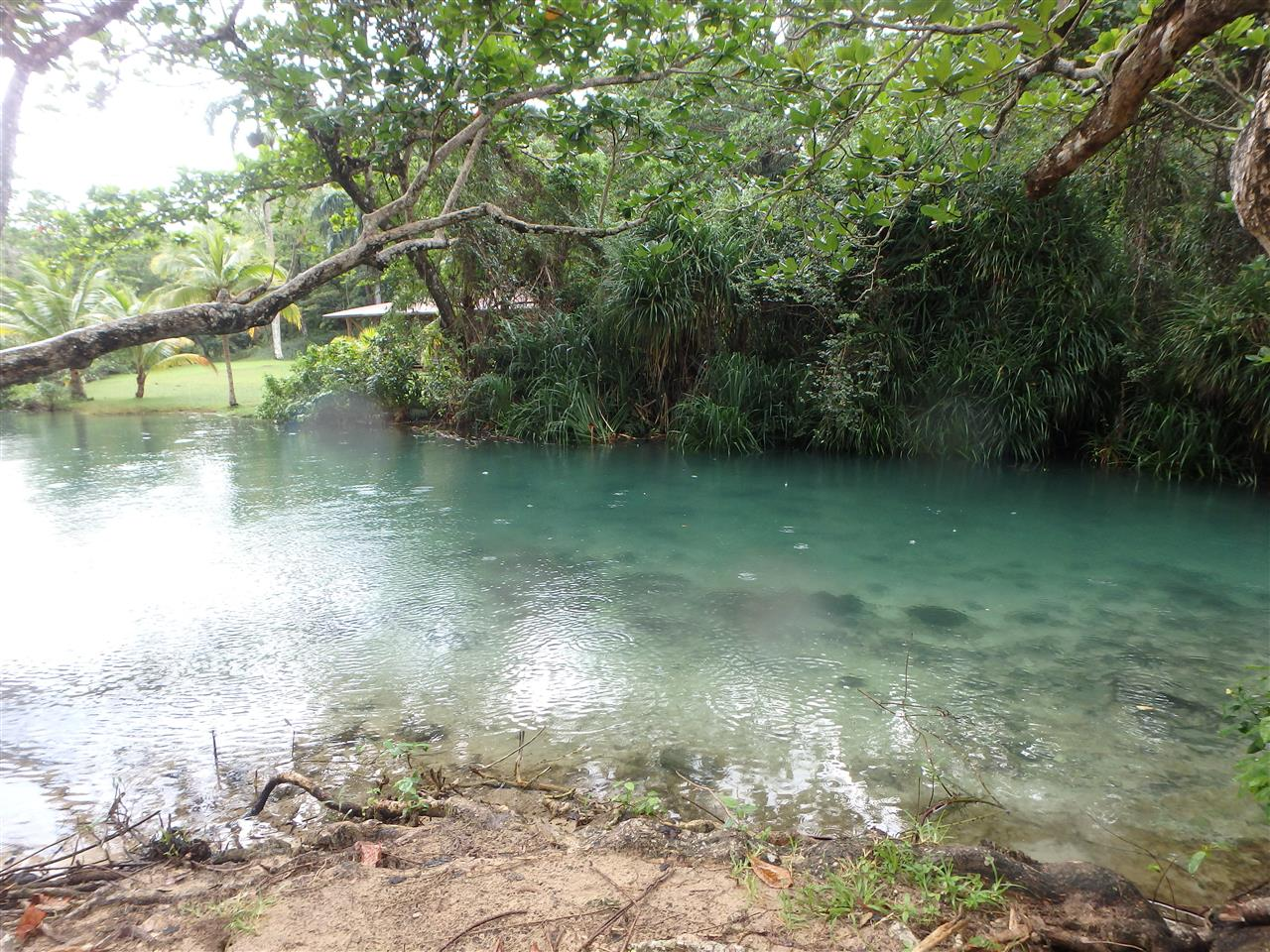 Beautiful clear waters Portland, Jamaica