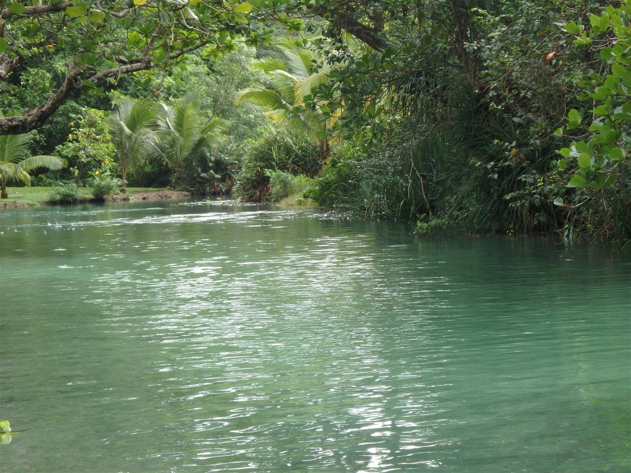River shot Portland, Jamaica
