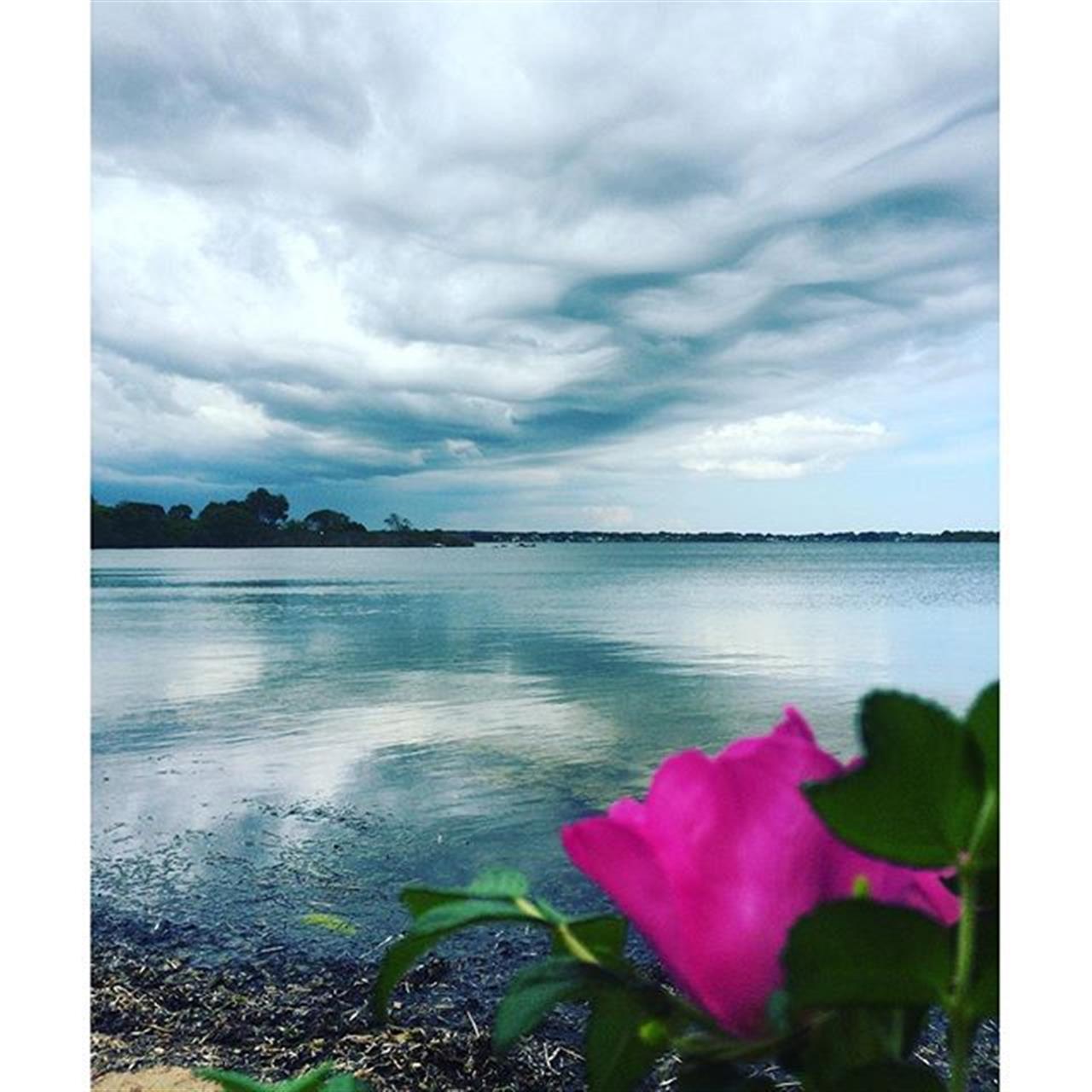 Beauty watching the approaching storm #rhodeisland