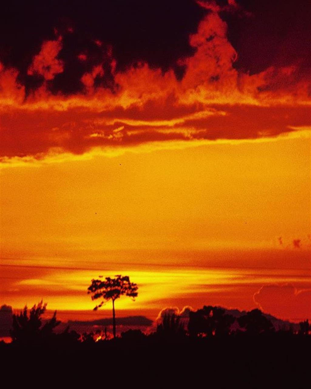 Cape Coral Sunset #vip_capecoral #leadingrelocal