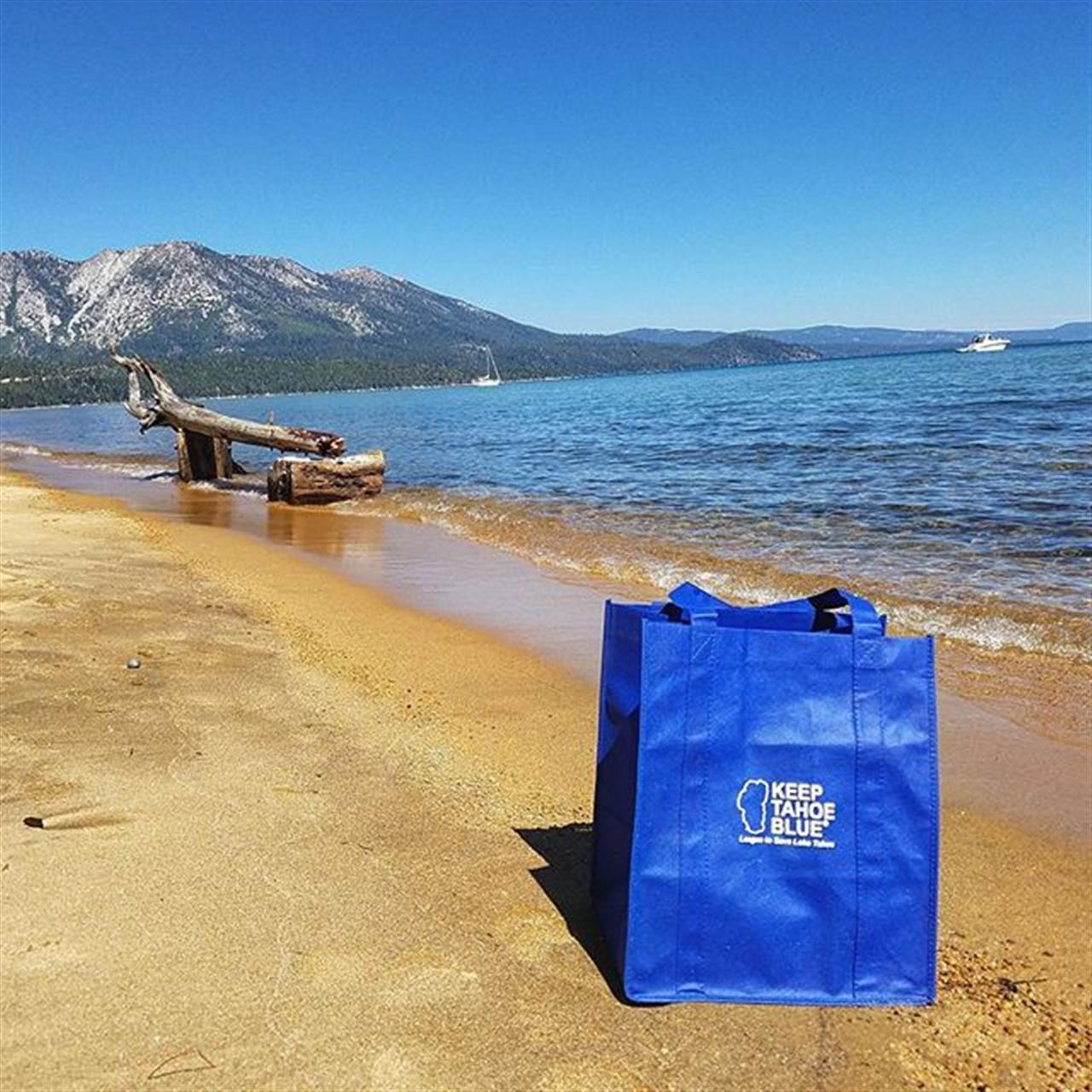 Beach Cleanup! Day After 4th of July and Our Beaches Need Some TLC. #southlaketahoe