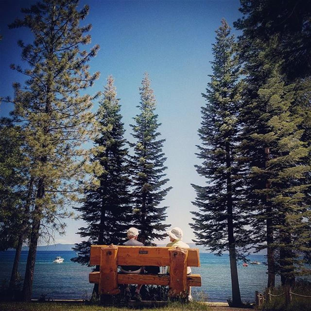 Enjoy a view with a loved one. Peacefulness within the trees of South Lake Tahoe.