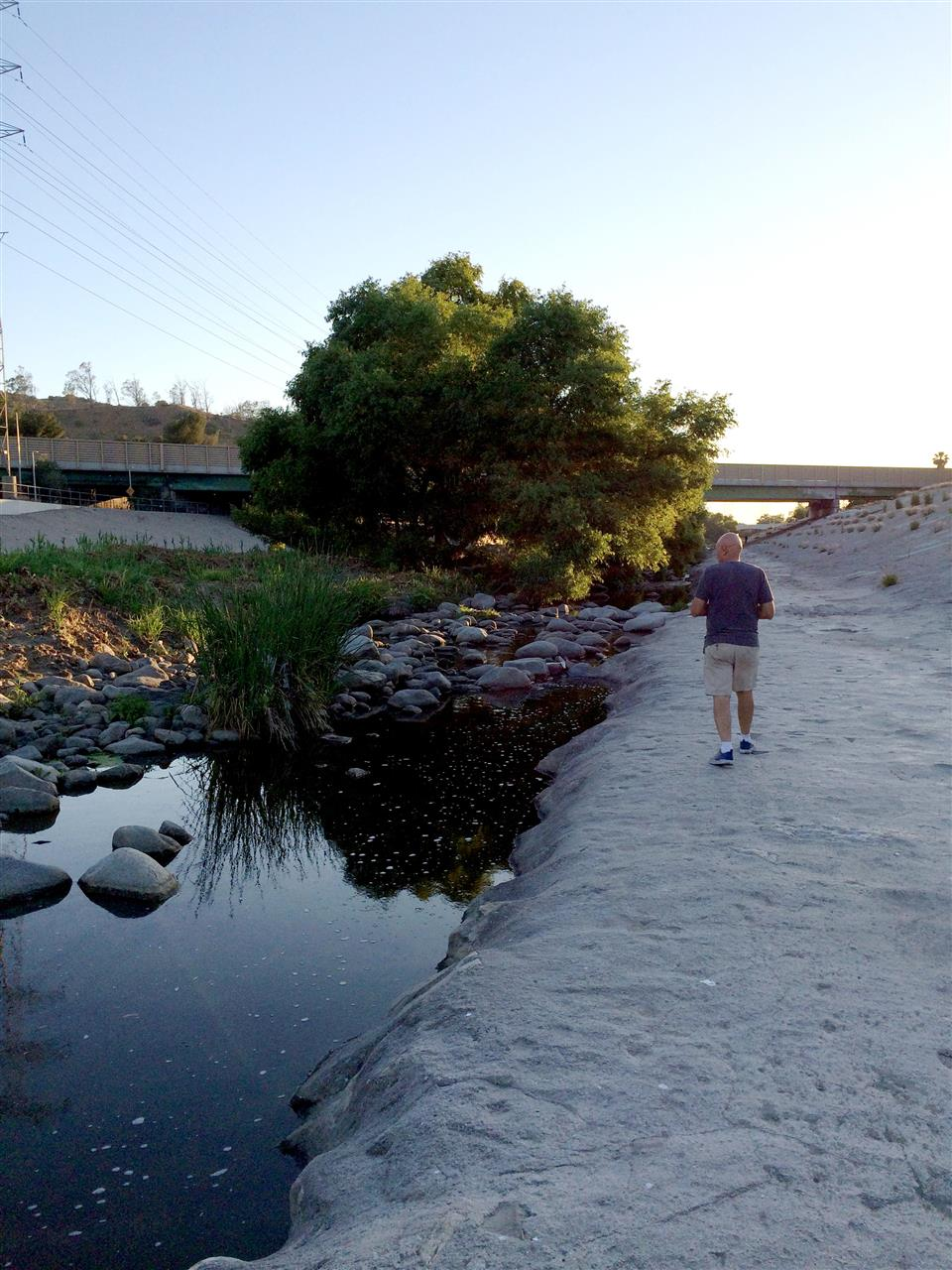 The LA River behind DreamWorks Animation in Glendale CA.  Surprisingly tranquil in the big city!