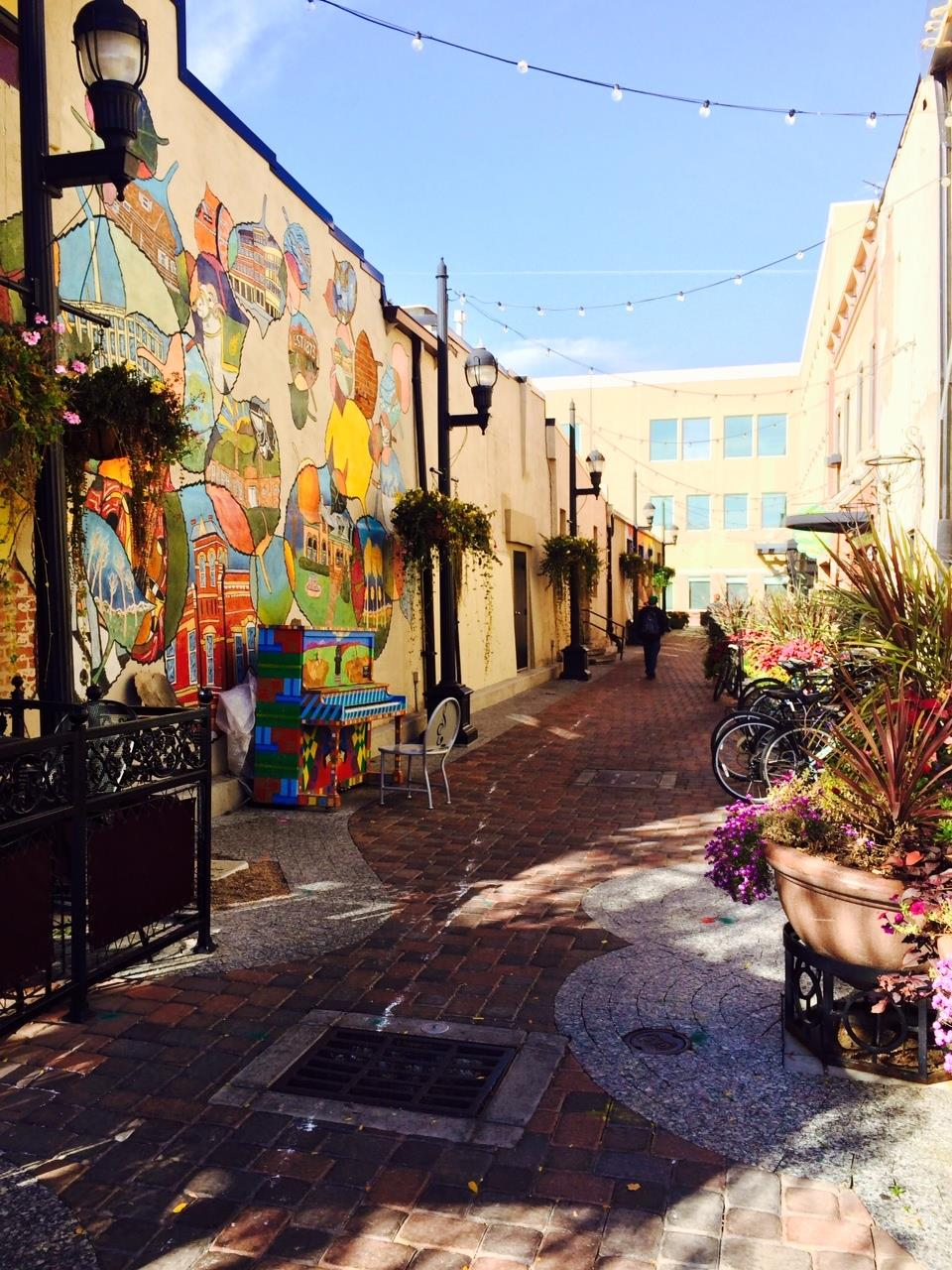 A lovely Old Town Fort Collins alley
