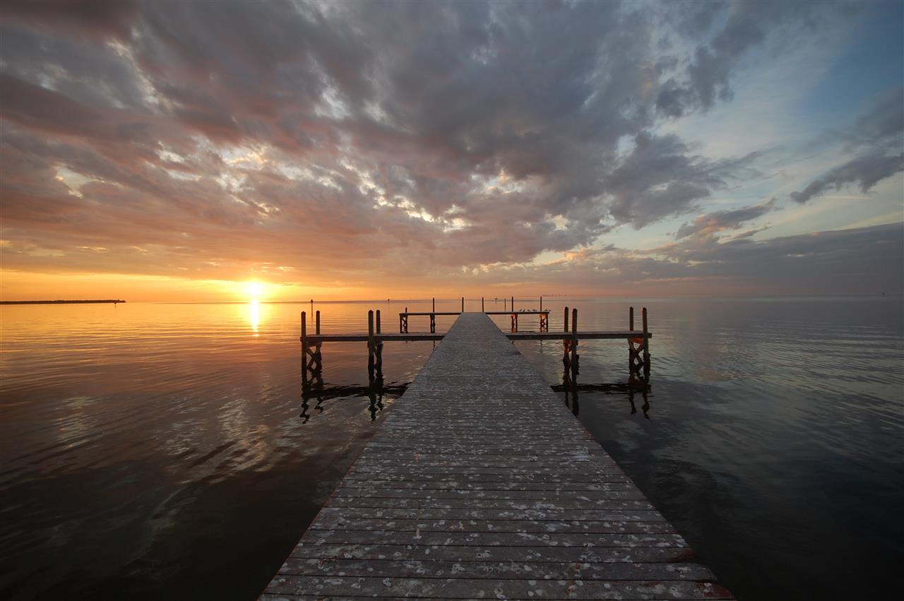 **** Near Apollo Beach Florida
