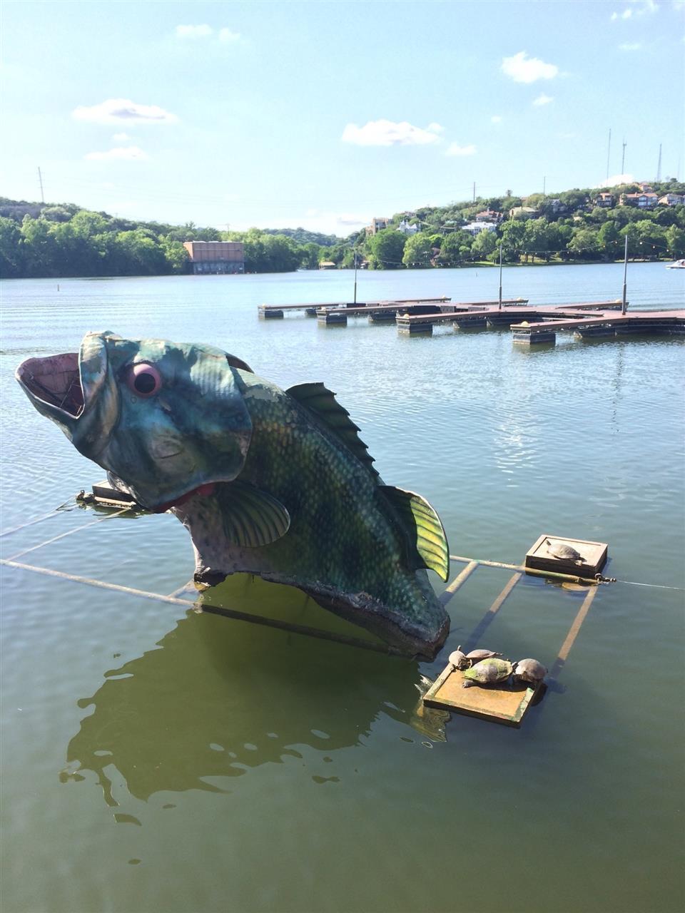 Hula Hut big fish and turtles on Lake Austin
