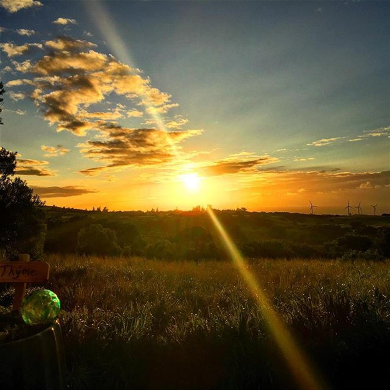 Lucky we live Hawaii!!!? Sunset L?VE on the farm tonight!! #derbyfarms #sunset #kohala