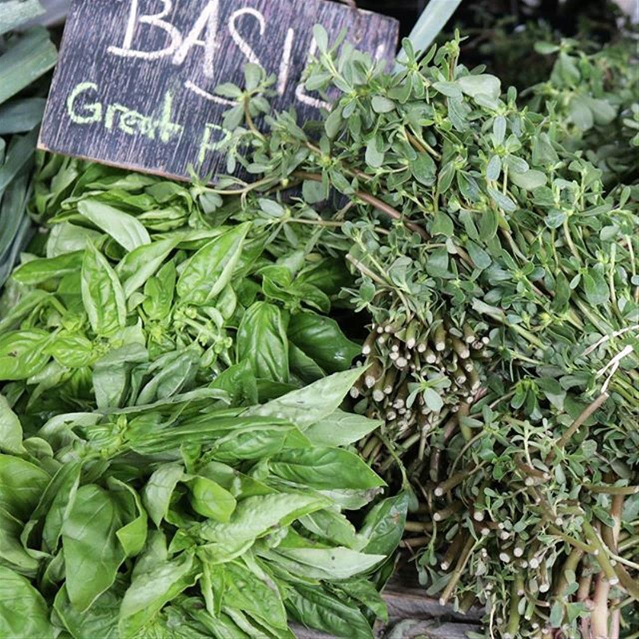 #ithaca #farmersmarket #herbs #basil